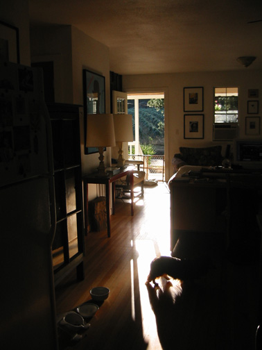 Darby_sunlight_door