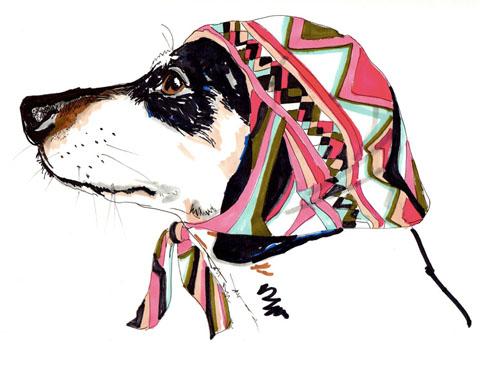 Jo_chambers_dog_portrait_7