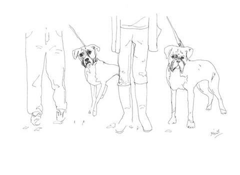 Minnie_teckman_dog_walk_8