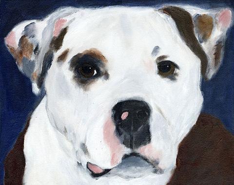 Leigh_jackson_dog_bailey