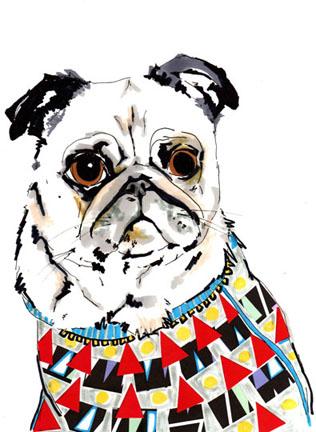 Jo_chamber_dog_portrait_2