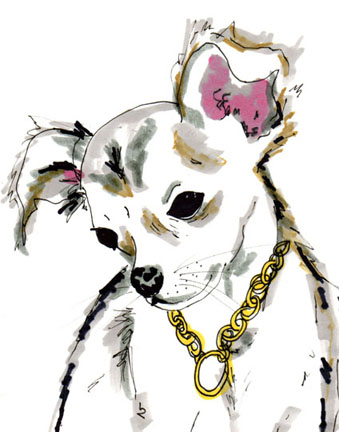 Jo_chambers_dog_portraits_3