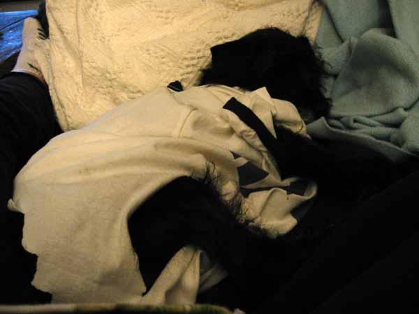 Tyler_Foote_sleeping_in_t_shirt