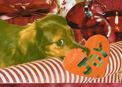 Darby_christmas_card