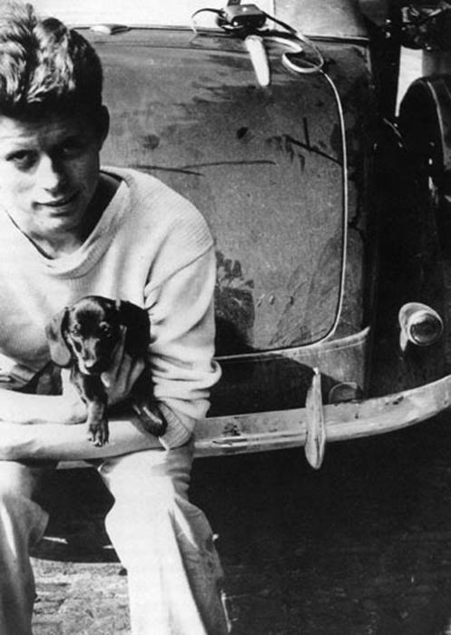 John_f_kennedy_dachshund_puppy_photograph