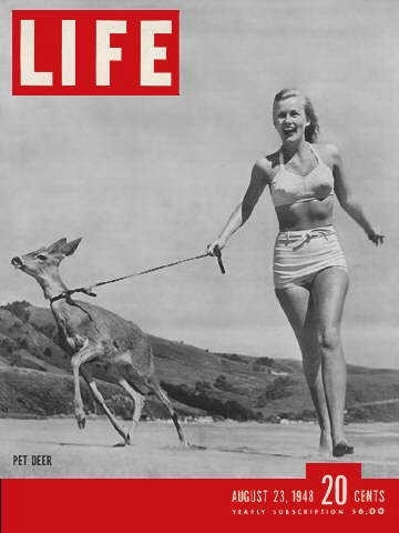 Life_magazine_cover_woman_with_pet_deer