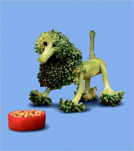 Dog_made_broccoli_Saxton_Freymann_Joost_Elffers