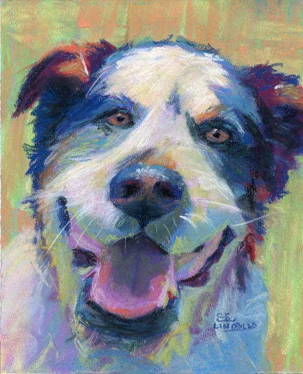 Sandy_lindblad_happy_dog
