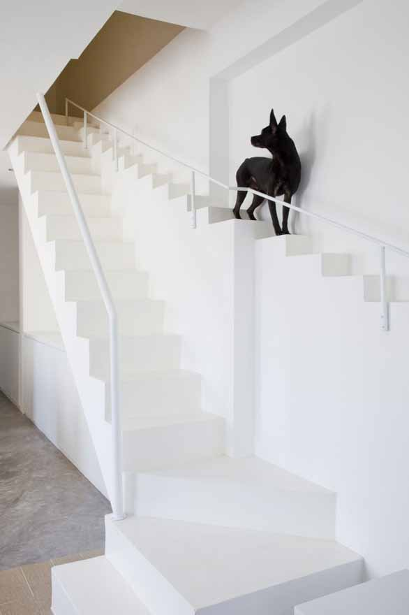 Staircae_for_dogs_07Beach_Architectural_Design_Office