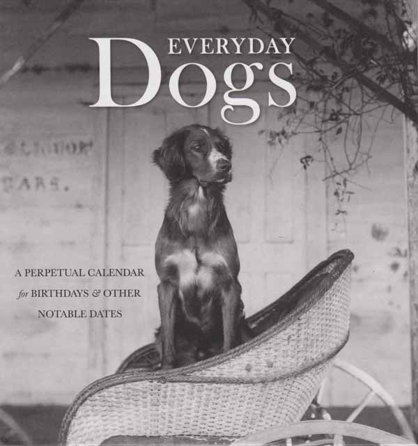 everyday dogs perpetual calendar cover