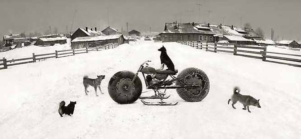 Pentti-sammallahti-solovki-white-sea-russia-1992-dog-on-snowmobile