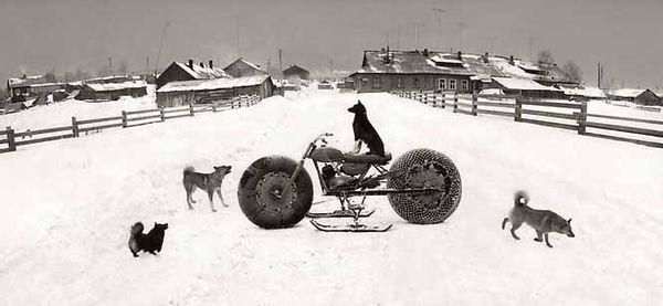Pentti-sammallahti-solovki-white-sea-russia-1992-dog-on-snowmobile