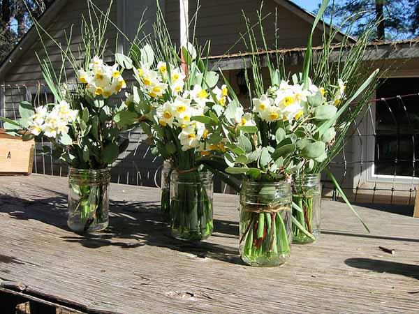 Narcissus-bouquet
