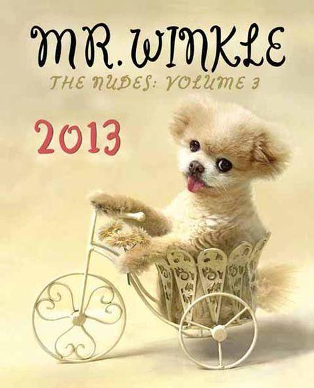 Mr_winkle_2013_calendar