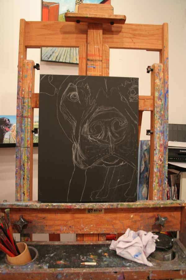 Kathryn-wronski-grass-valley-dog-artist-blue-studio