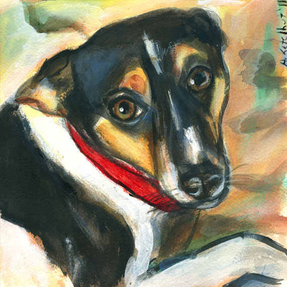 Rat-terrier-christmas-card
