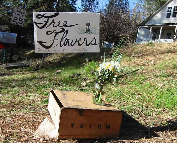 Free-flowers-5