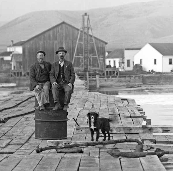 Everyday-dogs-calendar-dock-workers-by-patroni-house