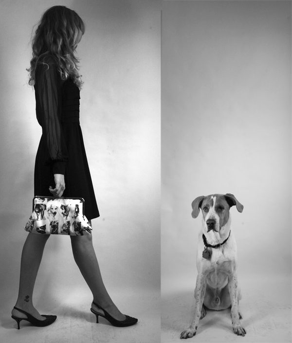 Pooch_Clutch_by_Colleen_Rudolf_2