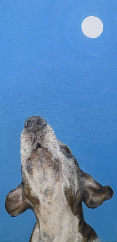 Blue-Bluetick-Coonhound-Julie-Glick