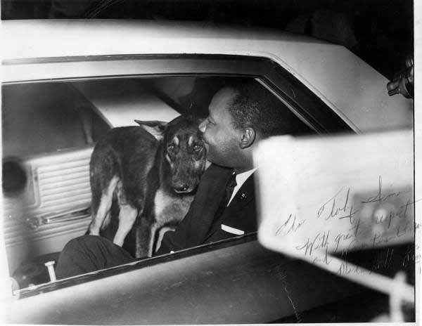 Martin-luther-king-jr-police-car-with-dog-st-agustine-florida