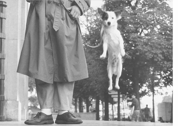 Elliott-erwitt-paris-1989-man-with-jumping-dog
