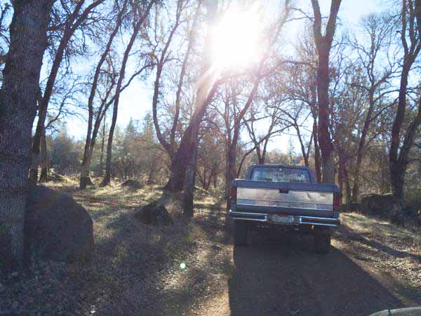 Penn-Valley-Firewood-Nickis-Truck-2