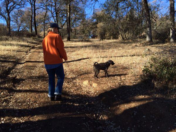 Penn-Valley-Firewood-Moira-and-Tyler