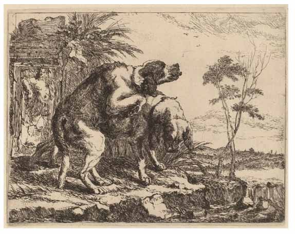 Two-Dogs-Copulating-Jan-Fyt-1640-1642