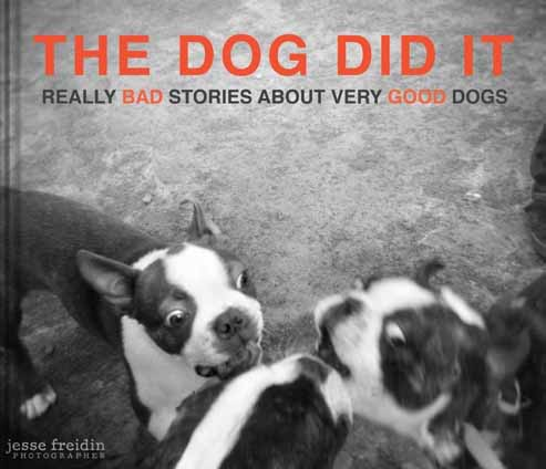 The-dog-did-it-blurb-photography-e-book-jesse-freidin