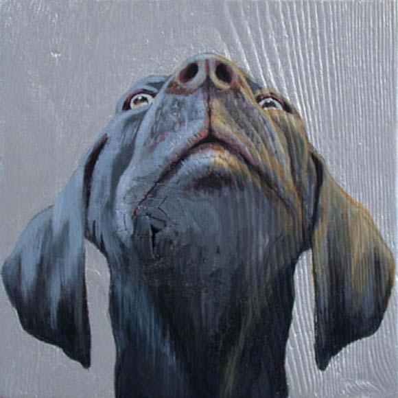 Dog_looking_up_by-Jane-O-hara_2004