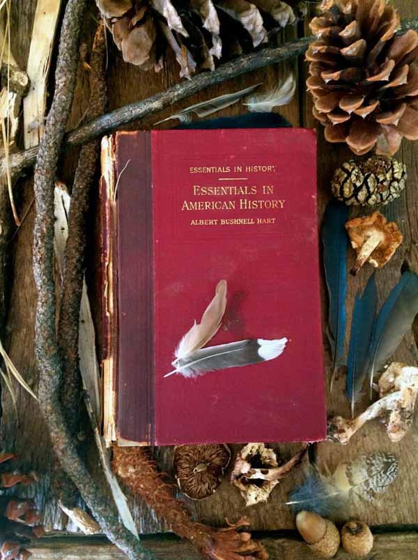 DANK-Koan-essentials-in-american-history-Moira-McLaughlin-600