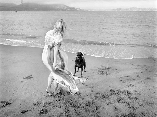 Bella-at-Chrissy-field-fine-art-pet-photography-Jesse-Freidin