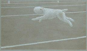 Runningdogw