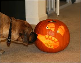 Preston_pumpkin
