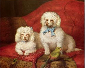 Poodle_poster_2