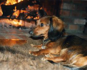 Darby_fireplace_blog