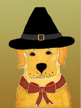 Thanksgiving_dog