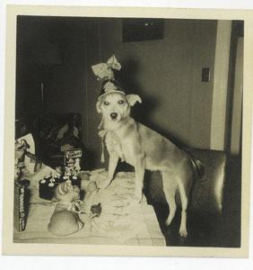 Dogs_vintage_birthday_2