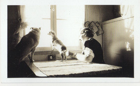 Dogs_vintage_photo_table_2