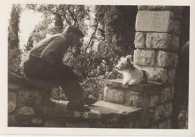 Dogs_vintage_talk_3
