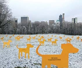 Pedigree_dogs_central_park
