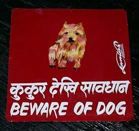 Nepal_dog_art_2
