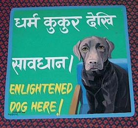 Nepal_dog_art_8