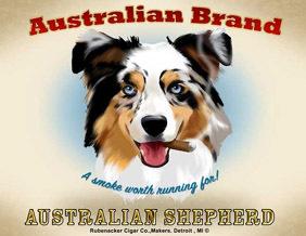 Rubenacker_australian_shepherd